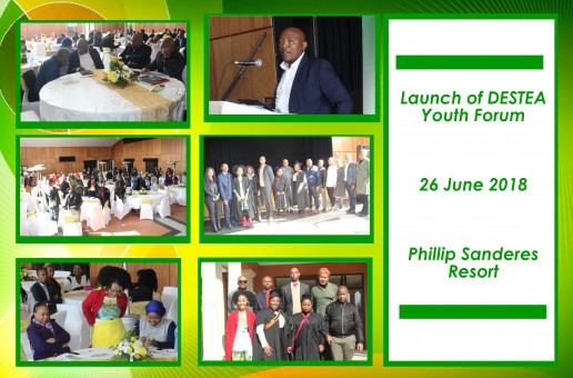 Launch of DESTEA Youth Forum
